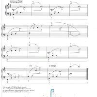 🐊 玩水的小鱷魚 🐊-簡易鋼琴曲集 Splash!Easy piano pieces about Water 5